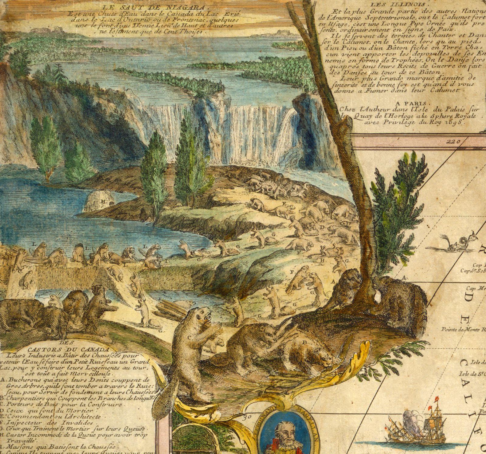 Castors du CanadaDétail d'une carte de Nicolas de Fer, L'Amérique du Nord et du Sud, 1698. Bibliothèque et Archives Canada, NMC-26825À lui seul, le castor représente 80 % des exportations de fourrures vers la France, pendant le 17e siècle.